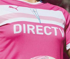 Projeto Rosa - Project Pink - Universidad Catolica do Chile 2014 capa