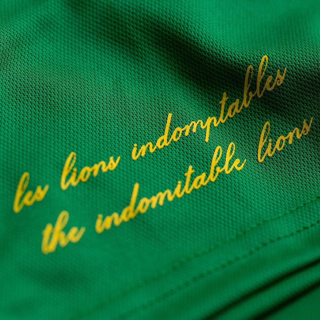 Camisas de Camarões 2021 Le Coq Sportif 8